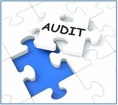 Importance of a fundraising audit